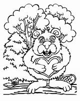 Beaver Coloring Pages Printable Beavers Popular Keywords Getcoloringpages Similar sketch template