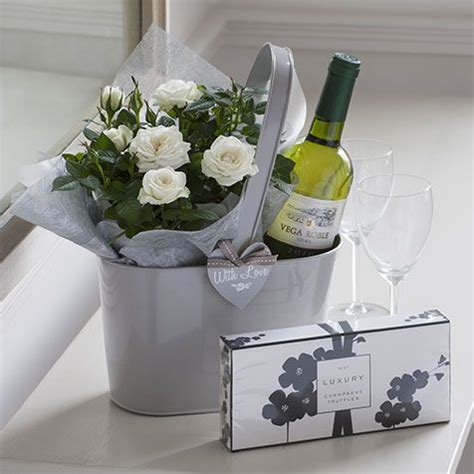 white wine  small  plant  simple gift wine