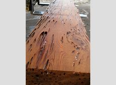 17 Best images about Dead Head Cypress or Pecky Wood on