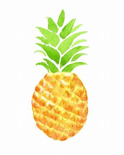 Pineapple Tropical Watercolor Clipart Summer Fruit Exotic