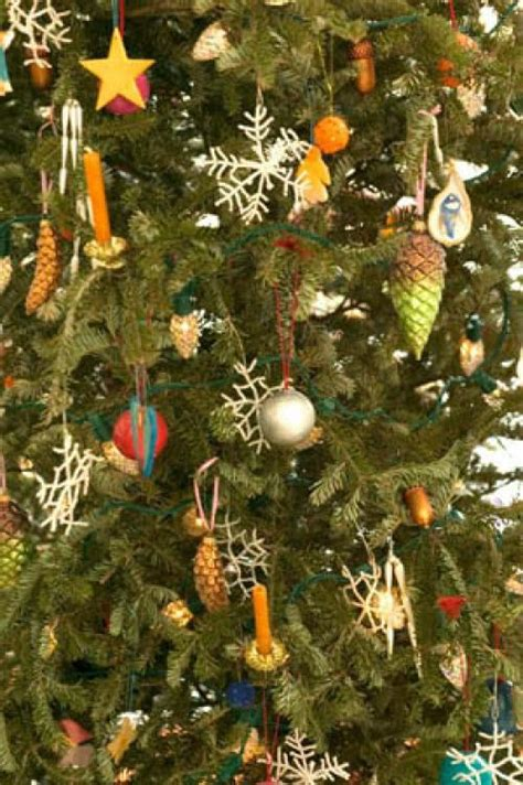 ways to recycle your christmas tree moonshine ink