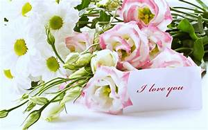 Bouquet love life couples lovers flowers roses gift ...