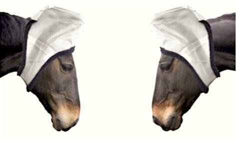 ears eyes horses each horse key research