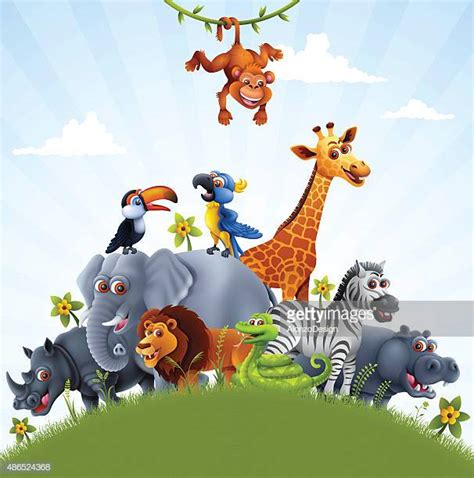 animal premium stock illustrations getty images