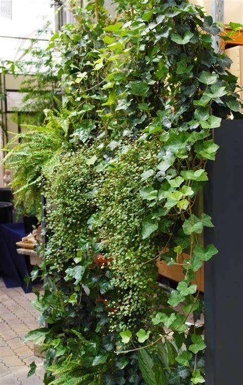 Raumteiler Mit Pflanzen Und Hydro Profi Line System