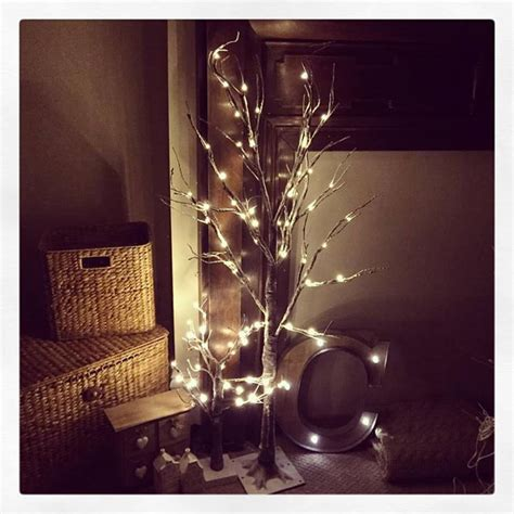 large indoor  outdoor brown light  snow covered twig
