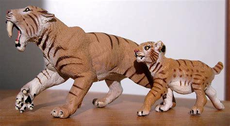 douglas tiger ebay bigcbit com agen resmi vimax hammer of thor klg pils titan gel viagra
