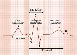 Heart Ecg Stock Vector  Illustration Of Monitoring
