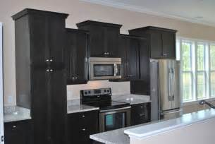 black cupboards kitchen ideas flat black kitchen cabinets interior exterior doors