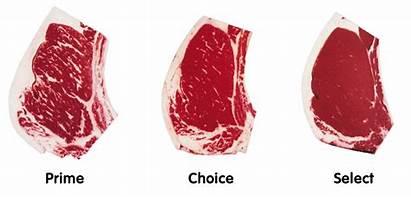 Beef Grades Grading Usda System Meat Prime