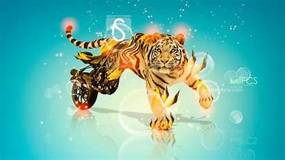 Tiger Tony Fantasy Wallpapers Ducati Kokhan El