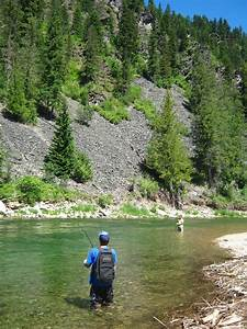 Coeur Designs Latest News Fly Fishing The Coeur D Alene River In