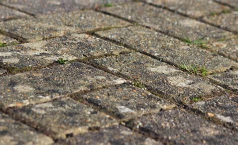 flechten entfernen soda terrassenplatten reinigen mein sch 246 ner garten