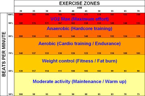exercise healthy zones health heart rate zone need rates heartrate fitness workout training hr lighten load regularly maintain exercises important