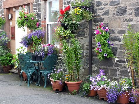 Container Gardening Ideas For Beginners