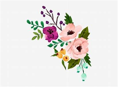 Clipart Flower Watercolor Pngkey