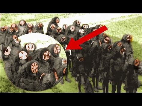 top  mysterious secret societies youtube