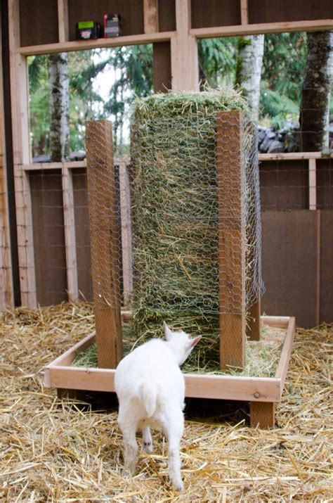 goat hay feeder square bale hay feeder for goats what a great idea for