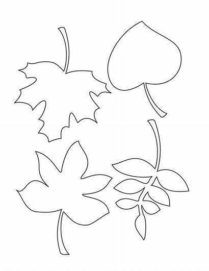 Leaf Printable Leaves Fall Patterns Coloring Pages