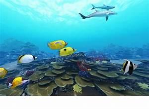 Tropical Ocean Biome Madison
