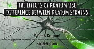 The Effects Of Kratom Use