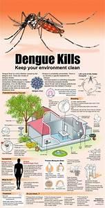 Predicted Dengue Fever Epidermic Singapore      Please Take Care