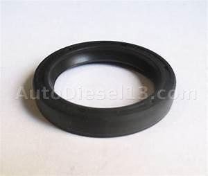 Changer Joint Pompe Injection Bosch : pochette pompe dpc autodiesel13 ~ Gottalentnigeria.com Avis de Voitures