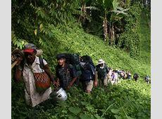 Papua New Guinea The Kokoda Trail Pioneer Expeditions