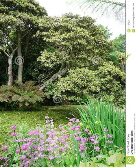 verloren tuinen van heligan ebooks tropische tuinen bij de verloren tuinen van heligan