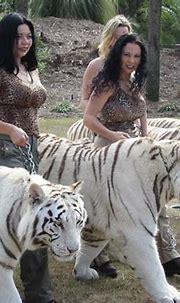 Tigers   ... Antle   Doc Bhagavan Antle   TIGERS   Dr ...