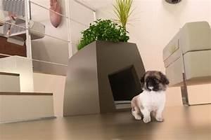 Niche Interieur Pour Chien : animal expo le plein de nouveaut s pour vos animaux conso wamiz ~ Melissatoandfro.com Idées de Décoration