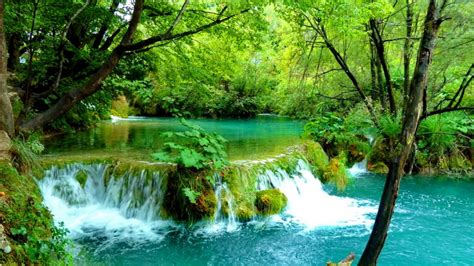 Waterfall Pond Wallpaper And Background Image 1366x768
