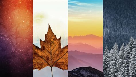Aesthetic Simple Fall Iphone Wallpaper by 47 Hd Iphone X Wallpapers Updated 2018