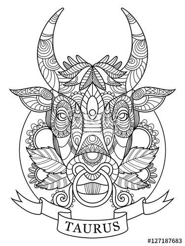 taurus zodiac sign coloring page  adults fotolia