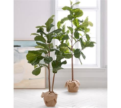 pottery barn tree faux potted fiddle leaf tree pottery barn