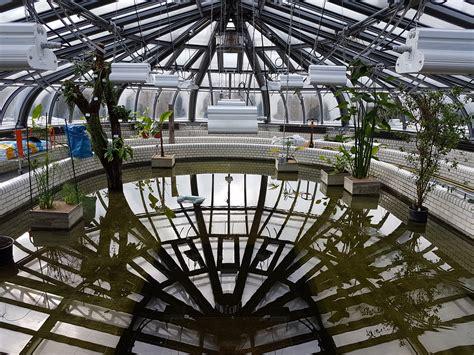 Botanischer Garten Berlin Sommerkonzerte 2018 by Pressefotos Bgbm