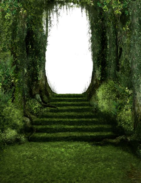 686 Forest Steps by Tigers-stock on DeviantArt