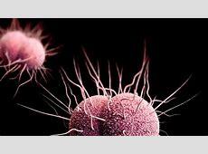 La OMS advierte del contagio de gonorrea por el sexo oral