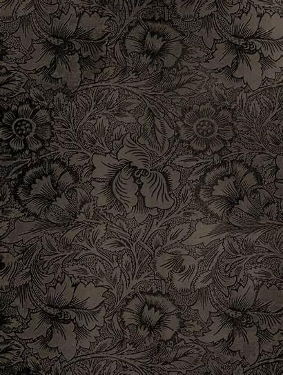 Texture Textures Seamless Interior Patterns Designs 3d