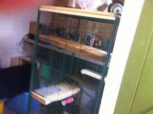 x2 chinchillas full set up and 2 cages | Liphook ...