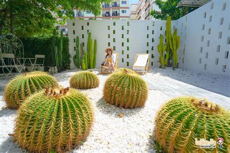 Breeze box cafe x cactus คาเฟ่แคคตัสสุดเก๋ในเมืองพัทยา ...