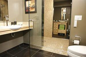 home design ideas beautiful handicap grab rails for With bathroom crashers application