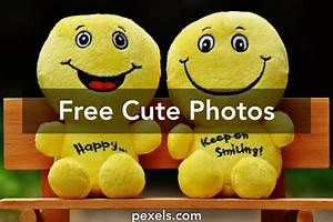 Cute Pictures · Pexels · Free Stock Photos