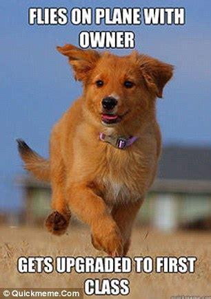 Orange Dog Meme - ridiculously photogenic syrian rebel goes viral daily mail online