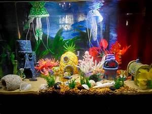 Cute Idea For A Bikini Bottom    Spongebob Themed Aquarium