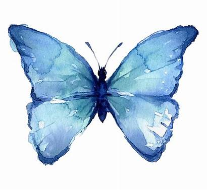Butterfly Watercolor Painting Easy Butterflies Transparent 5h
