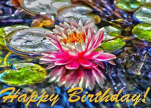 Happy Birthday Water Lily Greeting Card Photograph by