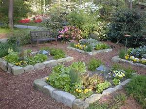 What to Plant in Your Vegetable Garden HGTV