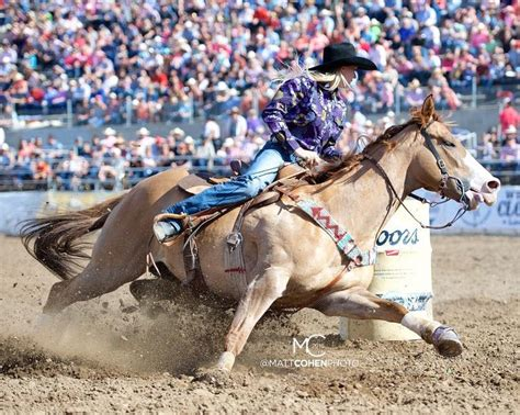 horses barrel racing horse riding race rodeo bull barrelracing paint nfr pretty pintos western cayla instagram qualifiers melby visit bending