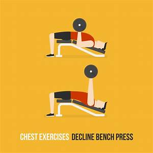 2019 U0026 39 S Guide To Best Chest Press Machines And Exercises